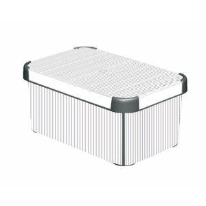 CURVER BOX s víkem - S - CLASSICO R41125