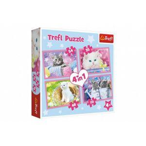 Puzzle 4v1 Kočičí zábava v krabici 28 x 28 x 6 cm