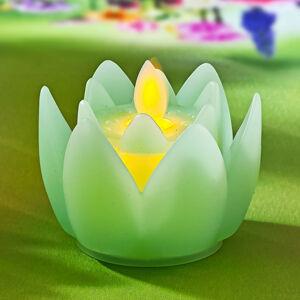 Magnet 3Pagen LED květ zelená